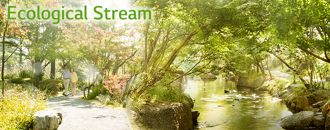Ecological Stream
